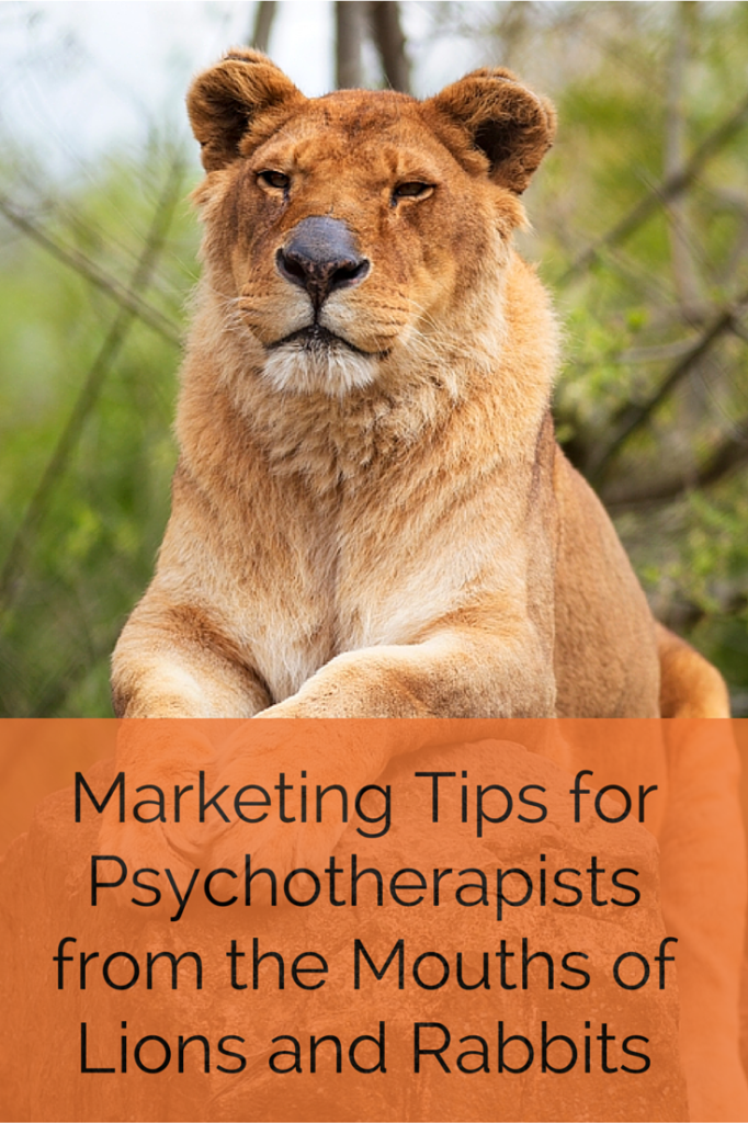 Marketing Tips for Psychotherapists from the Mouths of Lions & Rabbits