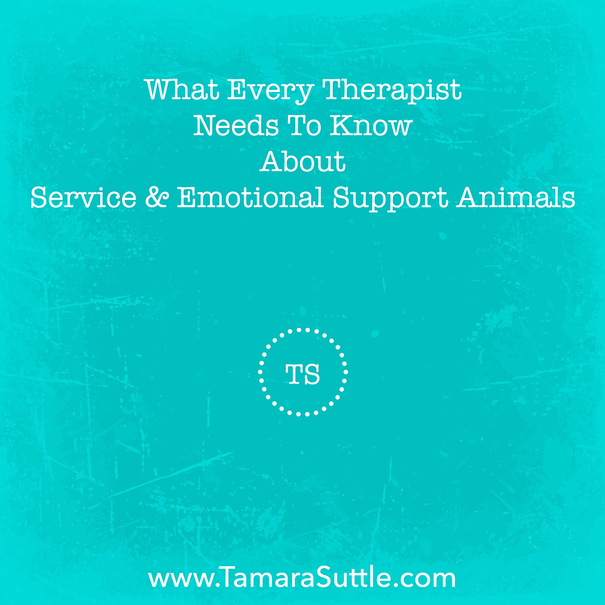 What Every Therapist Needs To Know About Service And